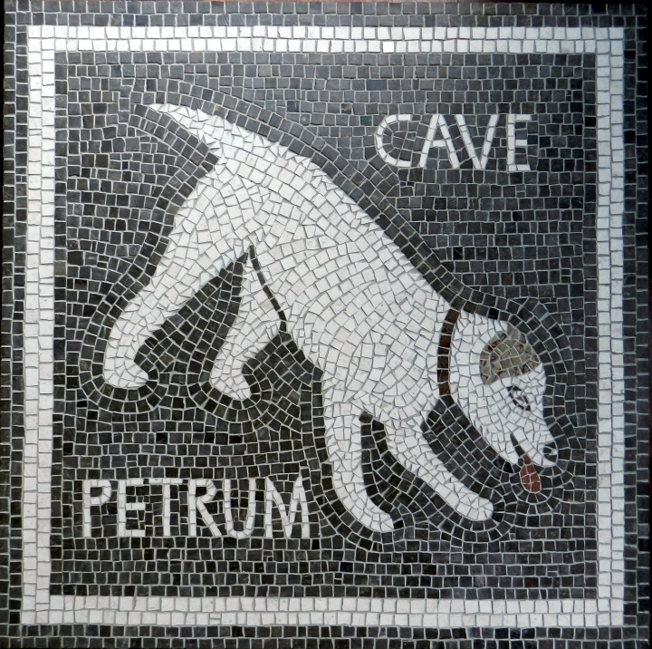 Scary Dog - Cave Petrum - by Helen Miles