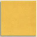 Mustard from Antigua Cerâmica