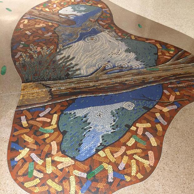 redwood-log-crossing