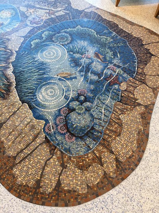 Tide pool mosaic walk along californian seashore gary drostle