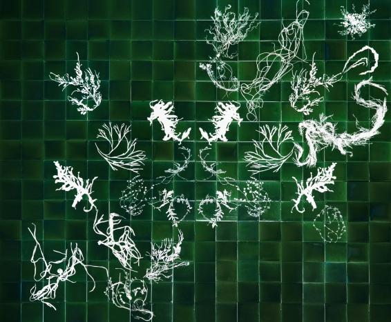 glithero-botanical_tiles-1569_5