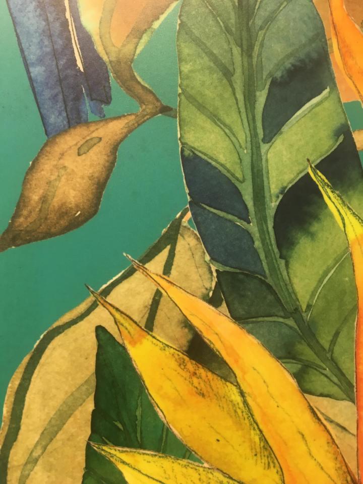 Jungle tropical print ceramic wallpaper tiles terratinta parrotland