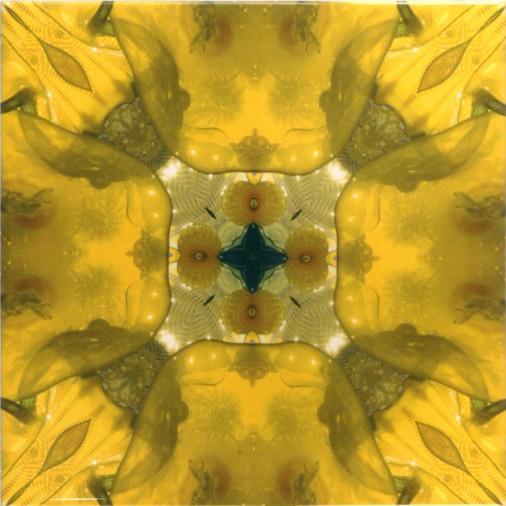 dominic crinson kaleidscope tiles