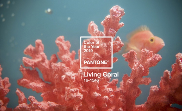 pantone_color_of_the_year_2019_8879_940x577